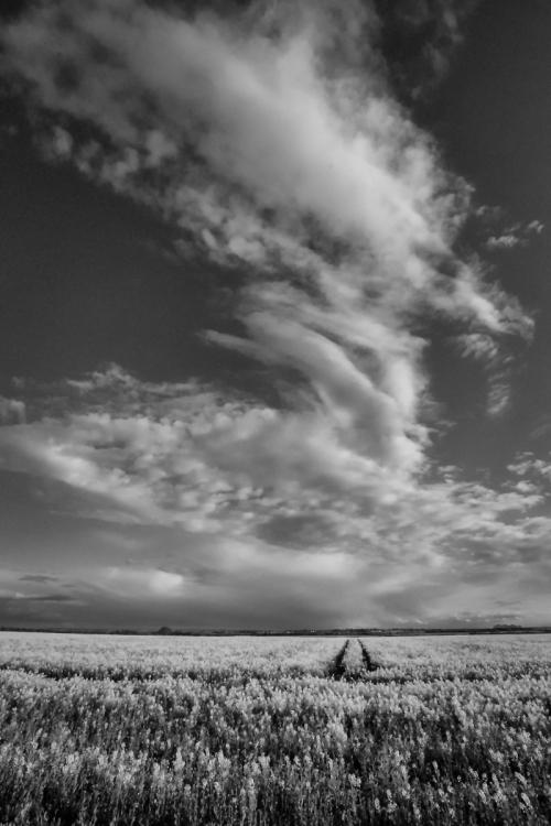 final clouds