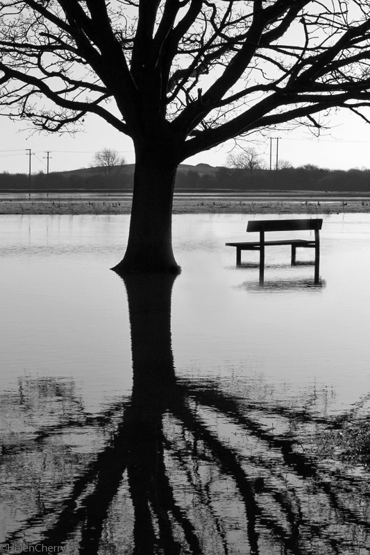 Flood and bench - Copy